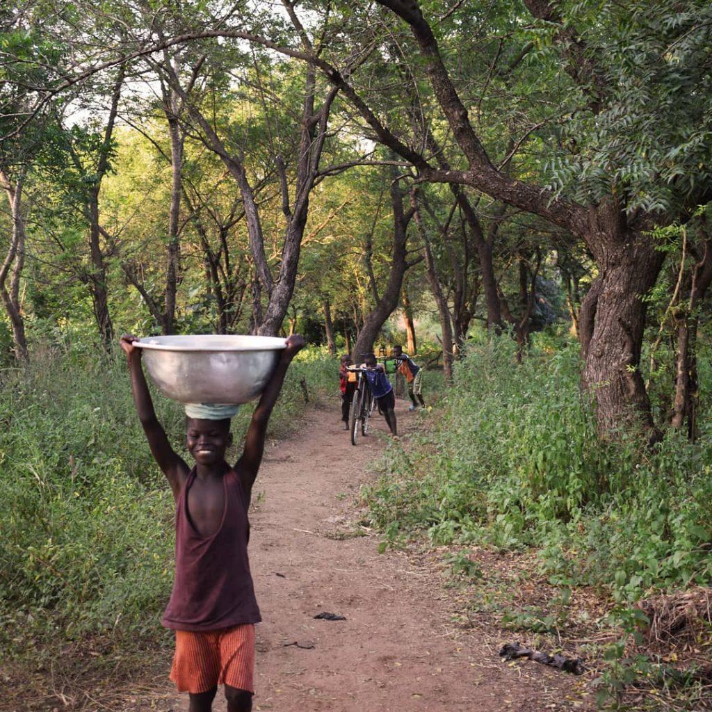 Agricultura ecológica y sostenible